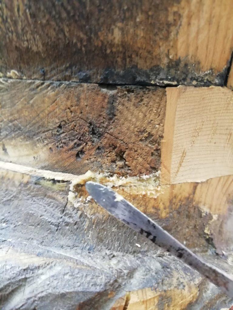 Stuccatura a polvere di legno su fianco di scultura di moro veneziano