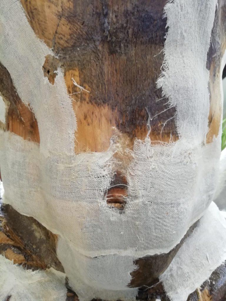Particolare di impannaggio su scultura lignea di moro veneziano