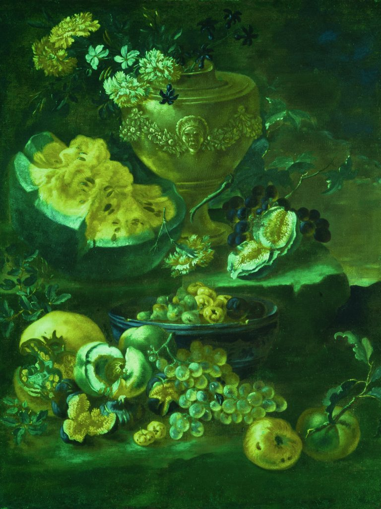 Immagine in infrarosso falso colore su dipinto ad olio