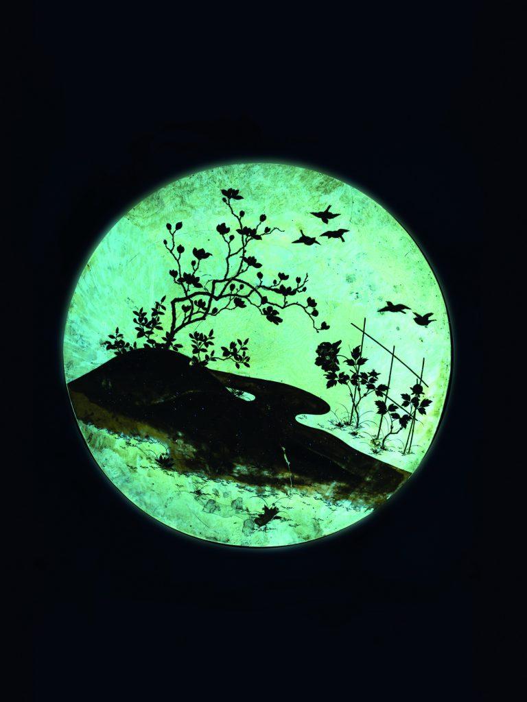 Immagine in fluorescenza UV di lacca giapponese su guscio di tartaruga